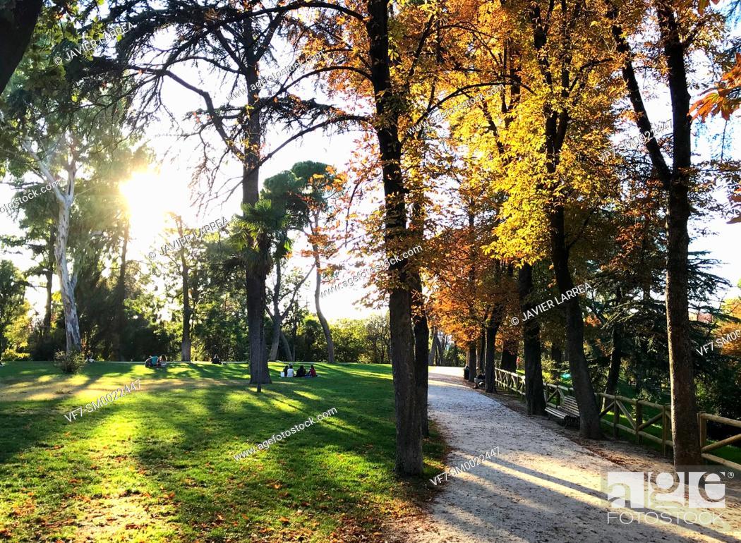 Stock Photo: Parque del Retiro, Madrid, Spain, Europe.