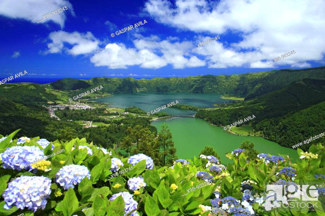 Stock Photo: Sete Cidades crater and the twin lakes, with hydrangeas on the foreground  Sao Miguel island, Azores islands, Portugal.