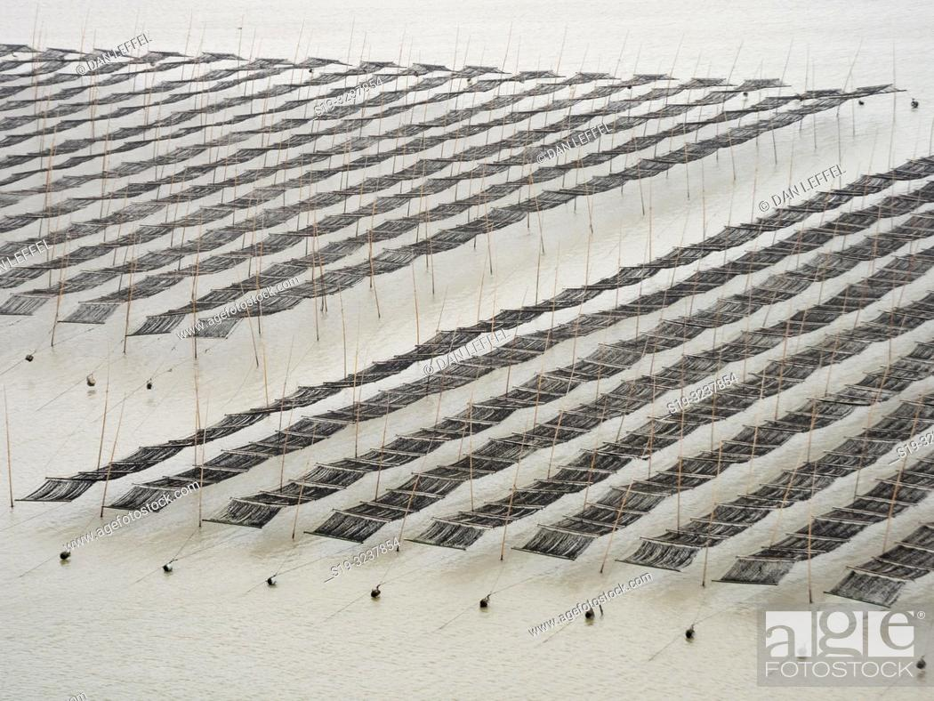 Stock Photo: China Xiapu Seaweed Farm.