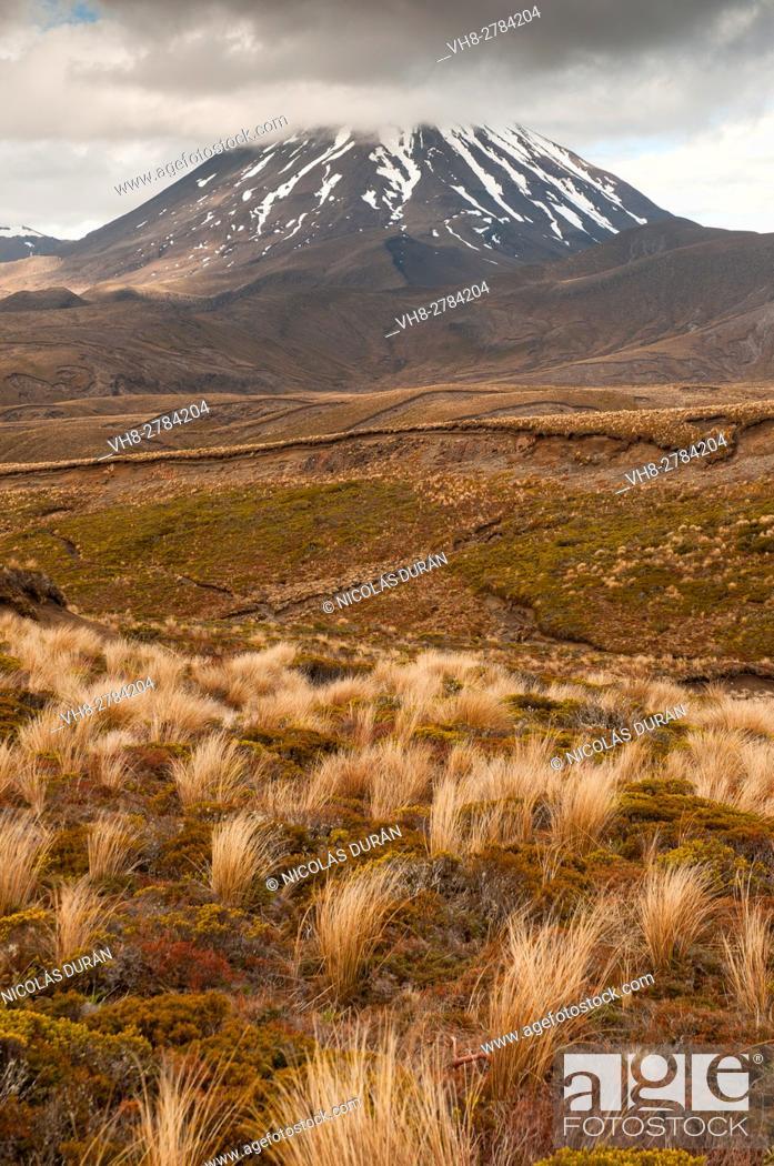 Stock Photo: Ngauruhoe Mount. Tongariro National Park. New Zealand.