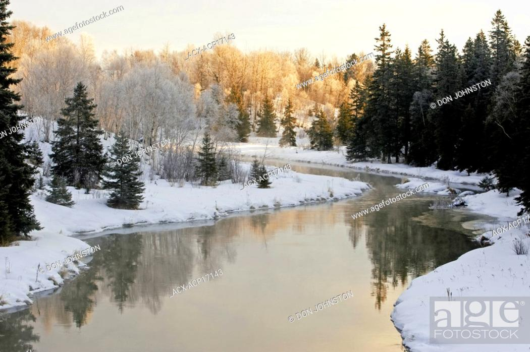 Stock Photo: Open water of Junction Creek with shoreline spruces and birches, Lively, Ontario, Canada.