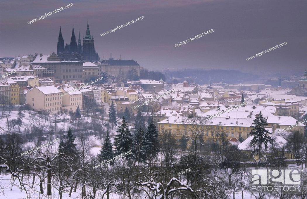 Stock Photo: Czech Republic - Prague Castle and Saint Vitus Cathedral in snow, Prague - Winter.