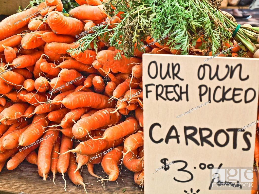 Stock Photo: Carrots at the farmer's market at Copley Square. Boston, Massachusetts.