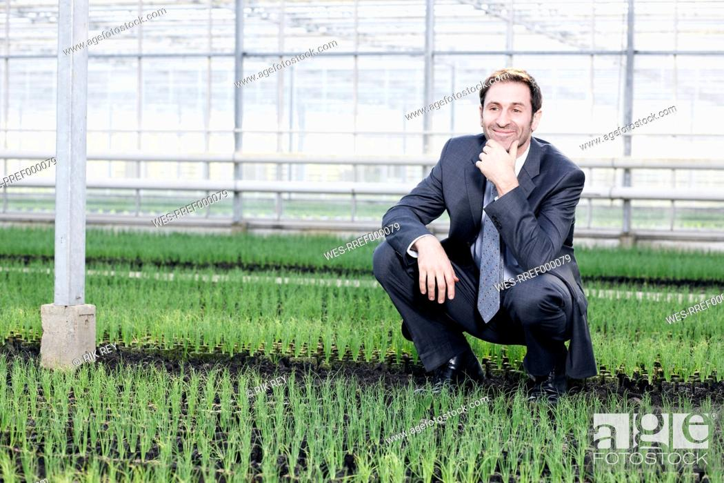 Stock Photo: Germany, Bavaria, Munich, Mature man in greenhouse between seedlings.