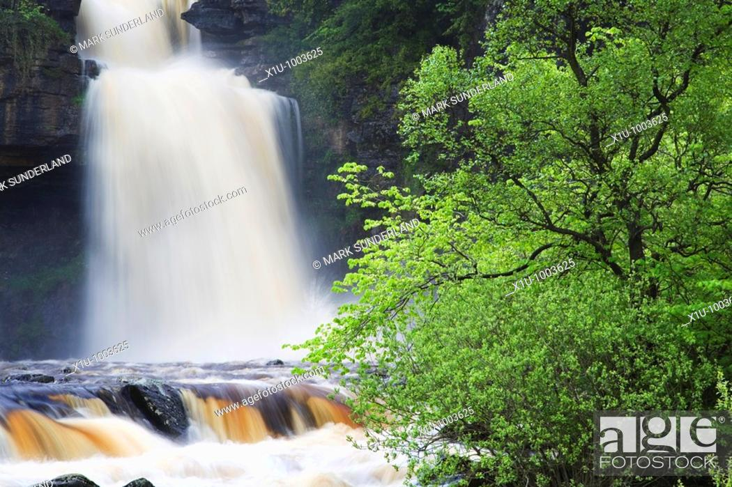 Stock Photo: Thornton Force in Full Flow After Heavy Rain Ingleton Yorkshire Dales National Park England.