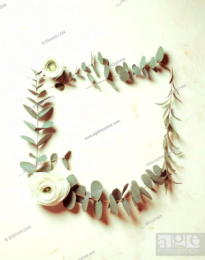 Stock Photo: Floral round frame with eucalyptus branches and leaves, flat lay flowers, top view with copy space.