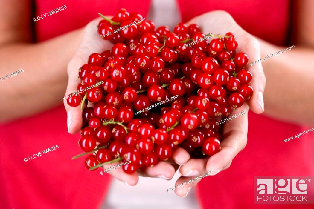 Stock Photo: A woman holding a handful of redcurrants.