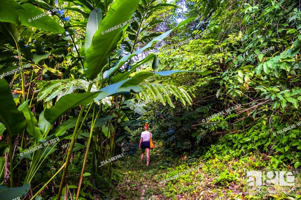 Imagen: Girl walking in the tropical nature of the Republic of Cuba, Caribbean, Central America.