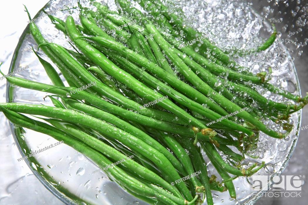 Stock Photo: Common bean.