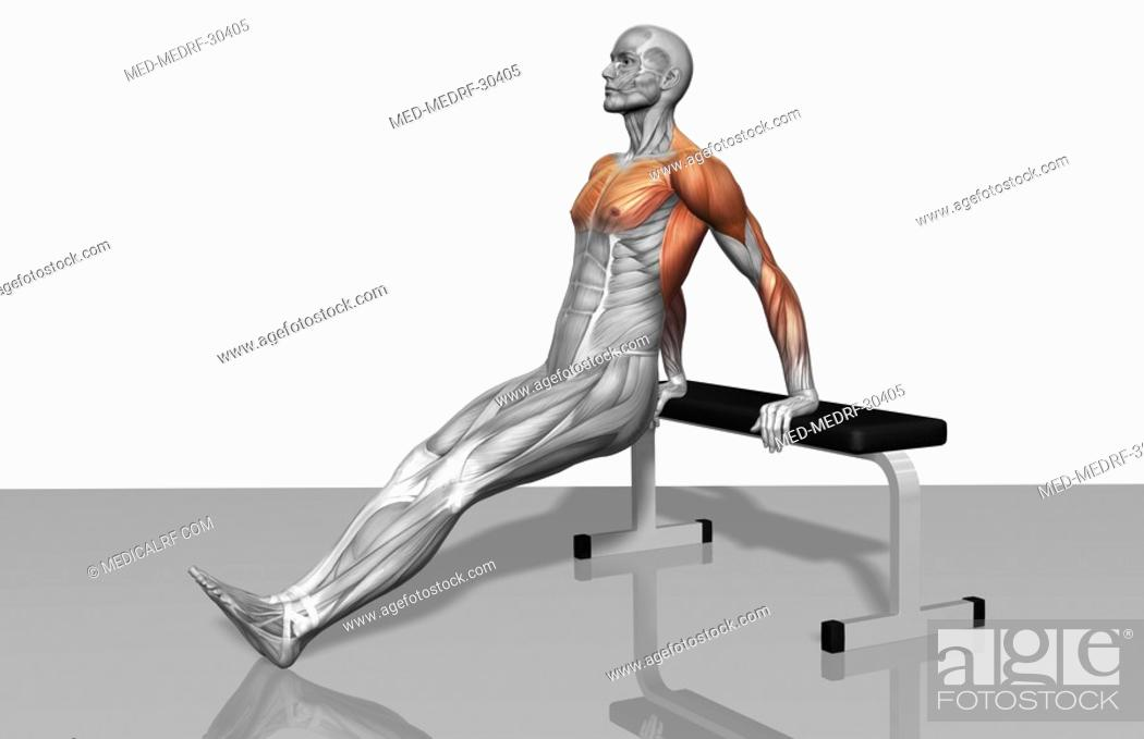 Stock Photo: Bench dips Part 2 of 2.