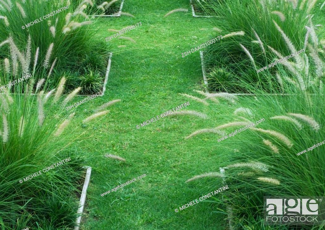Stock Photo: Landscaped yard with ornamental grasses.