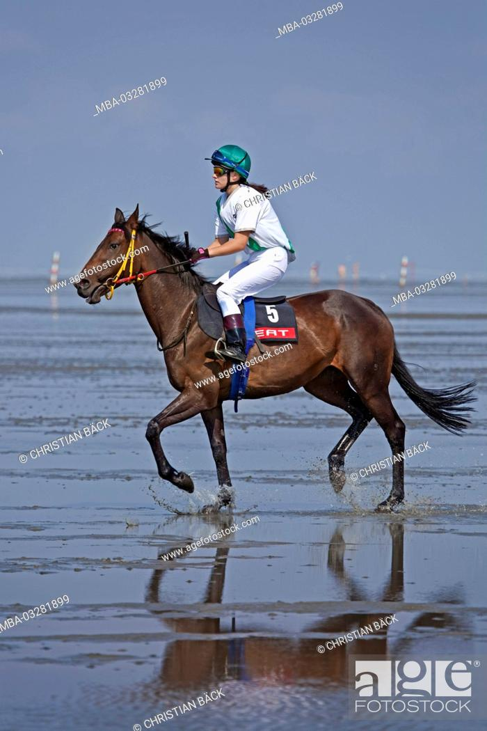 Stock Photo: Duhner mudflat races, Duhnen, Cuxhaven, Lower Saxony, Germany, Europe,.