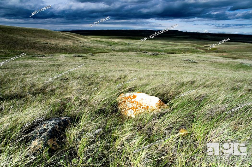 Stock Photo: Landscape of Frenchman River valley in Grasslands National Park Saskatchewan, Canada.