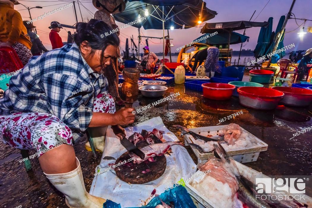 75eb3fd88f1 Stock Photo - Fish market at sunrise