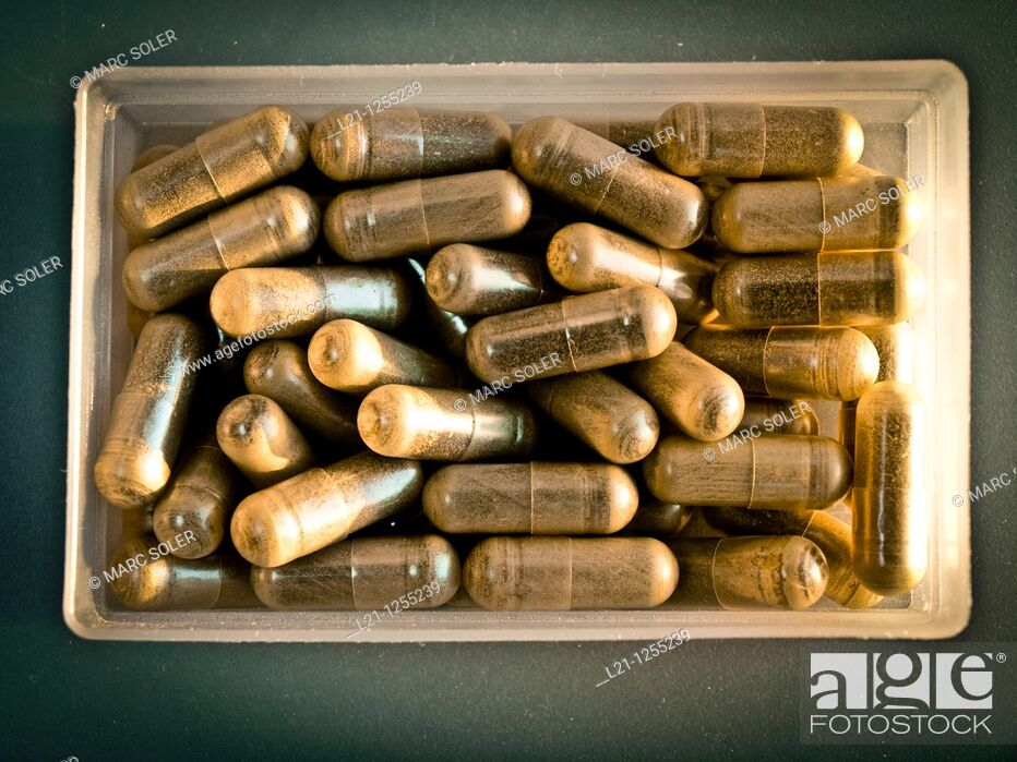 Stock Photo: Herbal pills in a plastic box.