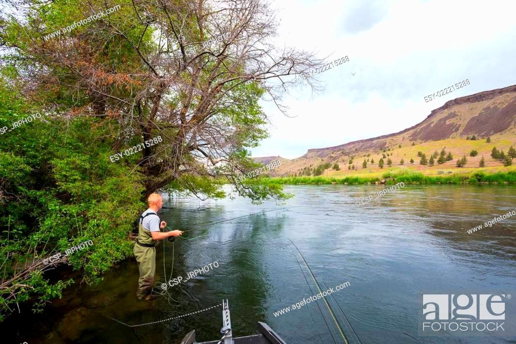 Fly Fisherman Casting on the Deschutes River, Stock Photo