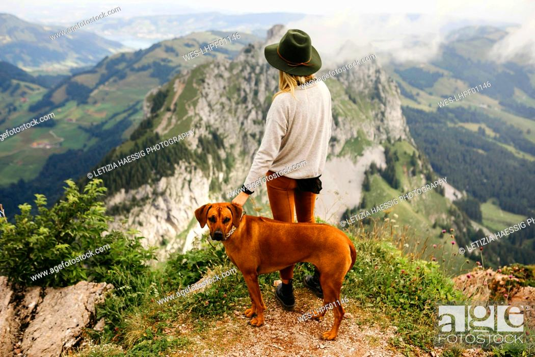 Stock Photo: Woman with dog on viewpoint, Grosser Mythen, Switzerland.