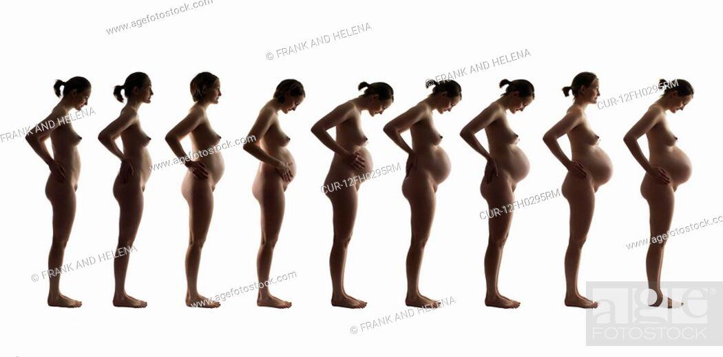 Pregnant progression nude necessary