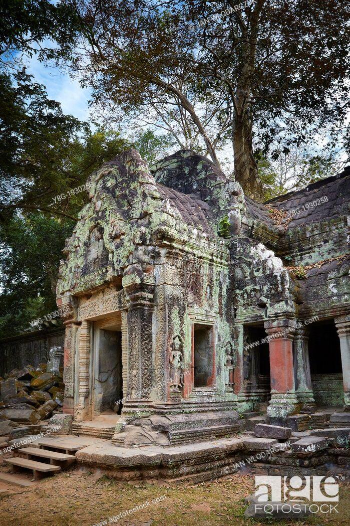 Stock Photo: Ruins of the Ta Prohm Temple, Angkor Temple Complex, Cambodia, Asia.