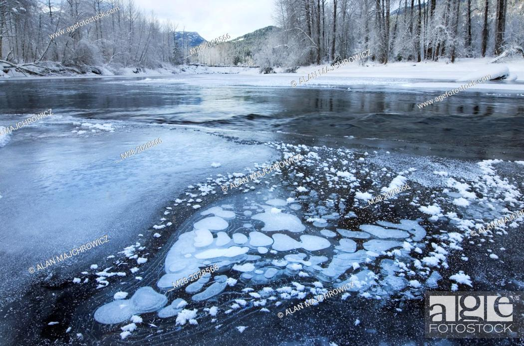 Stock Photo: Ice bubbles and frost along the Birkenhead river near Pemberton, Coast Mountains British Columbia.