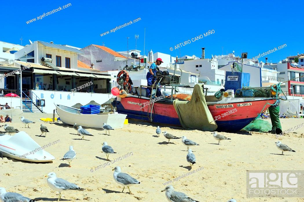 Stock Photo: Fisherman and seagulls at the Salema beach. Lagos, Algarve region, Portugal.
