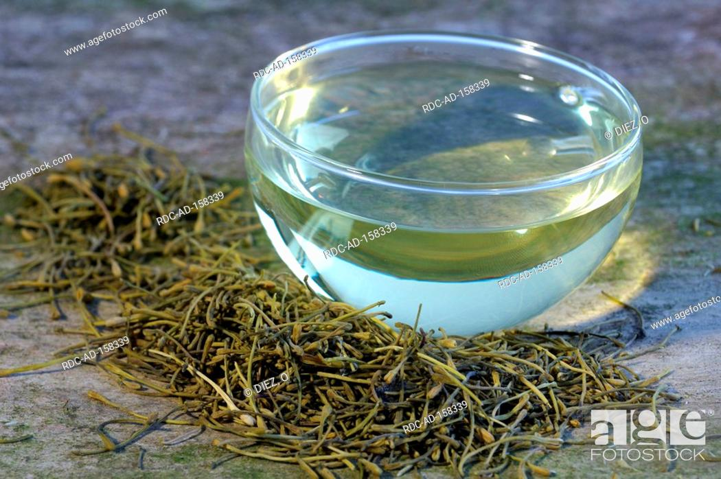 Stock Photo: Cup of Jin Yin Hua tea Lonicera caprifolium Lonicera japonica Goat's Leaf Jinyinhua.