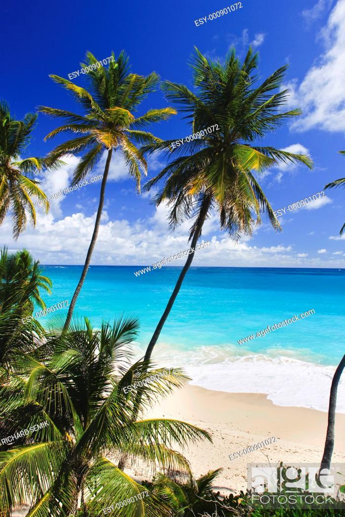 Stock Photo: Bottom Bay, Barbados, Caribbean.