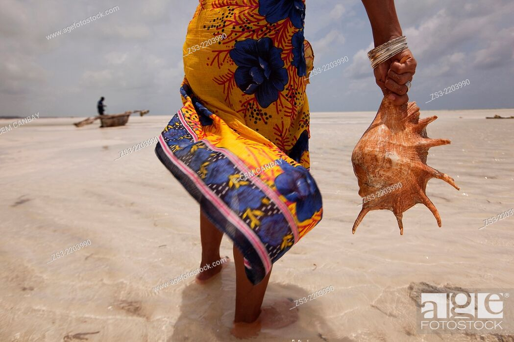 Stock Photo: Woman holding a sea shell, Jambiani, Zanzibar Island, Tanzania, Indian Ocean, East Africa.