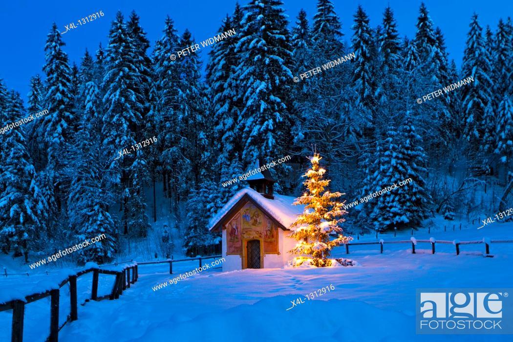 Stock Photo: Chapel with illuminated christmas tree in Upper Bavaria, Bavaria, Germany.