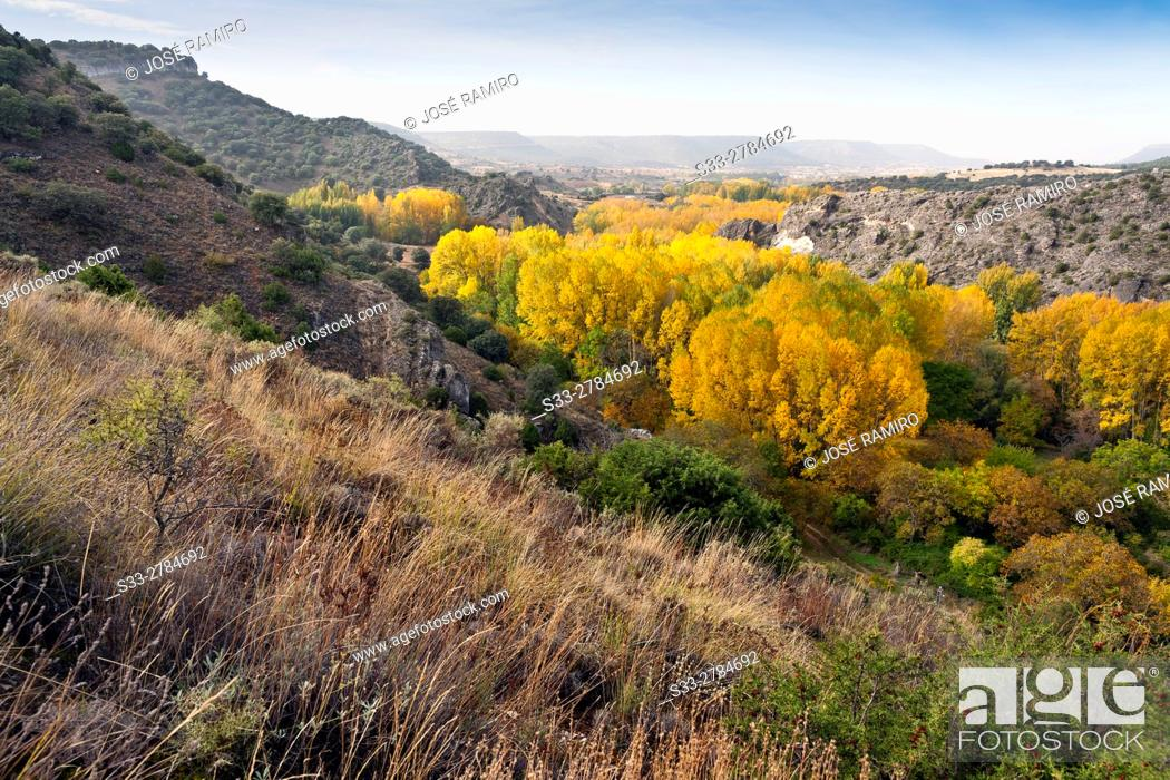 Stock Photo: Autumn in the canyon of Rio Dulce. Aragosa. Guadalajara. Castilla la Mancha. Spain. Europe.