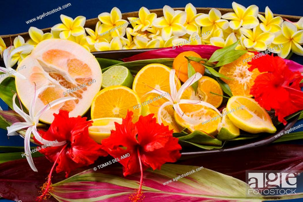Stock Photo: Studio shot of a variety of citrus fruit cut in slices, with flowers.