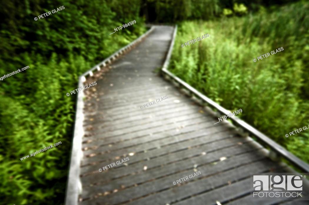 Stock Photo: Walking trail at a city park.