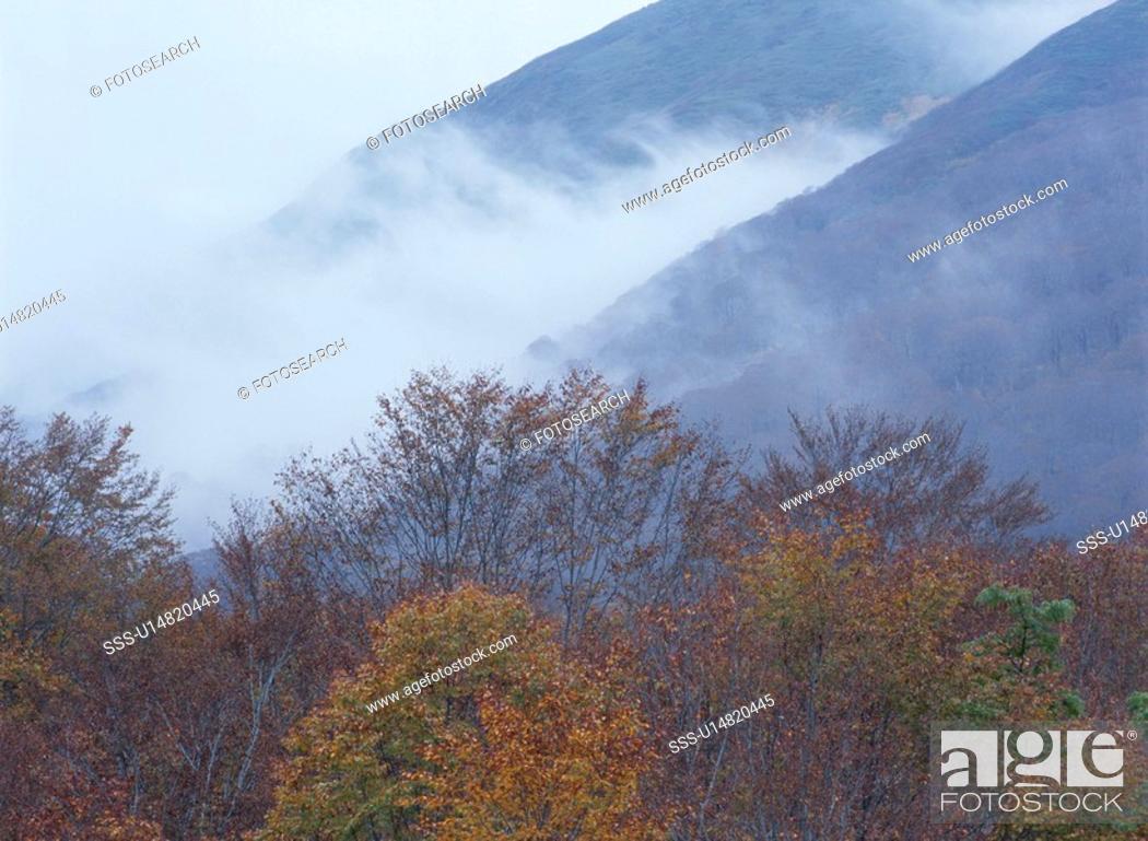 Stock Photo: Mountain.