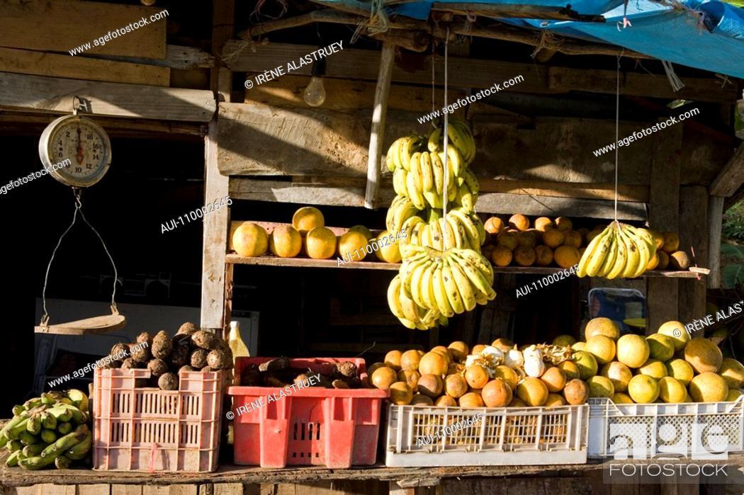 Dominican Republic - North Coast - Marketable fruit and