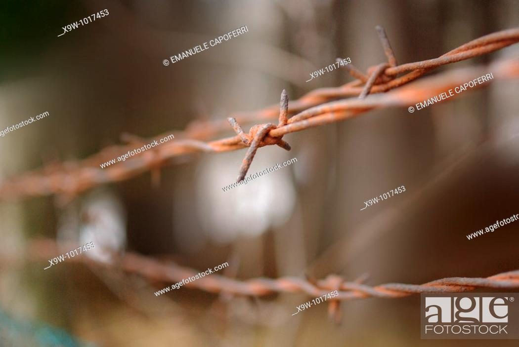 Stock Photo: barbed wire.