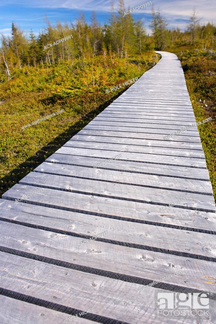 Stock Photo: Boardwalk at the start of the Boney Shore Trail, across the harbour from the town of Red Bay, Labrador Coastal Drive, Viking Trail, Strait of Belle Isle.
