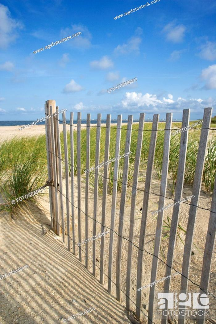 Stock Photo: Weathered wooden fence on sand dune.