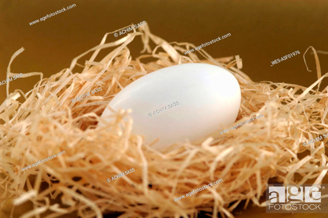 Stock Photo: Egg in straw nest, close-up.