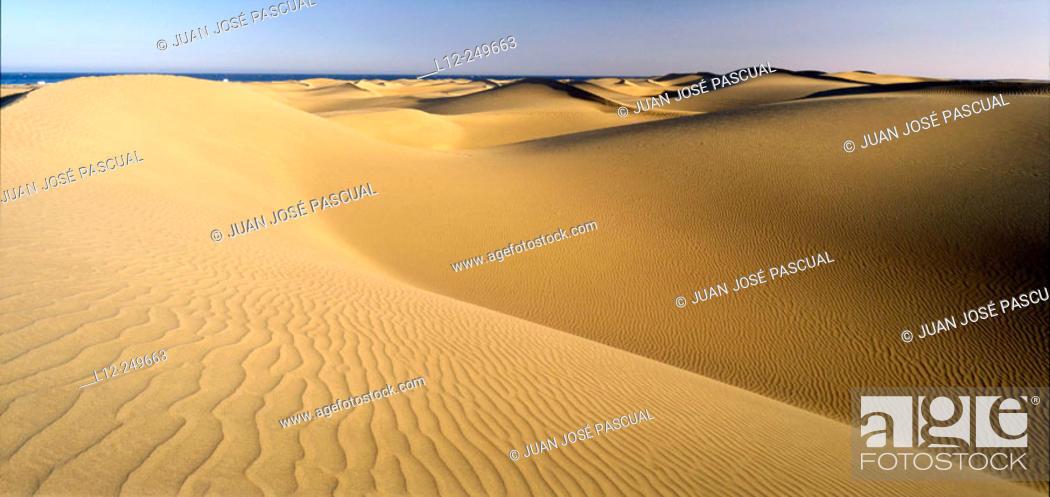 Stock Photo: Maspalomas. Grand Canary. Canary Islands. Spain.