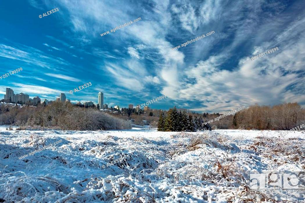 Stock Photo: Snow, winter landscape in Deer Lake Park against the background of Burnaby City and beautiful cloudy sky.