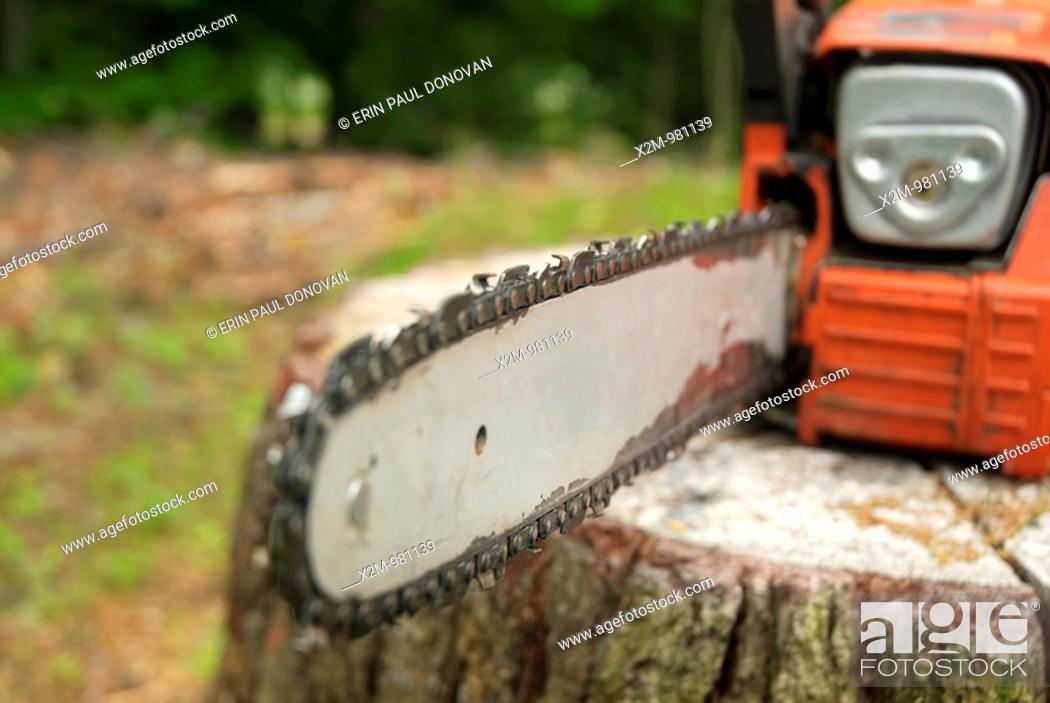 Stock Photo: Chainsaw.