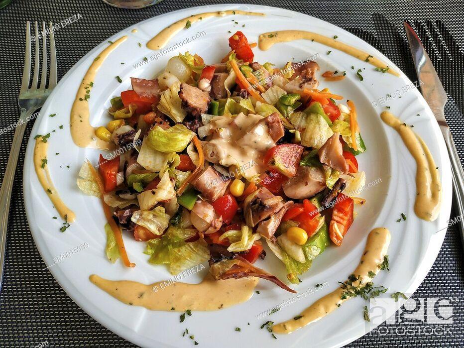 Stock Photo: Octopus salad.