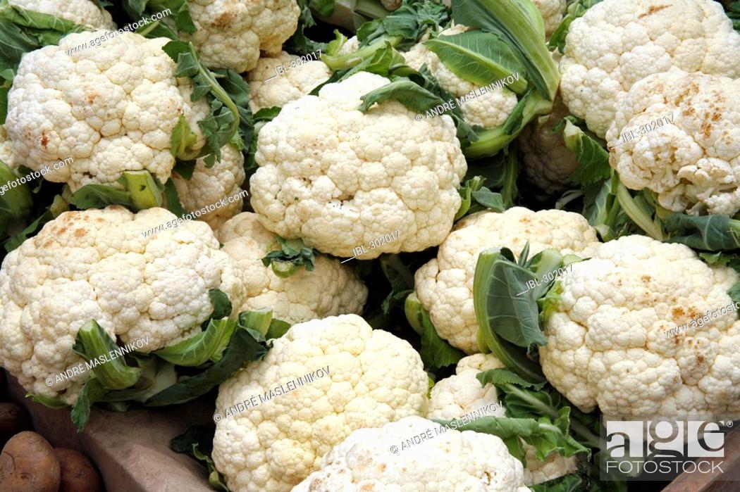 Stock Photo: Cauliflowers.