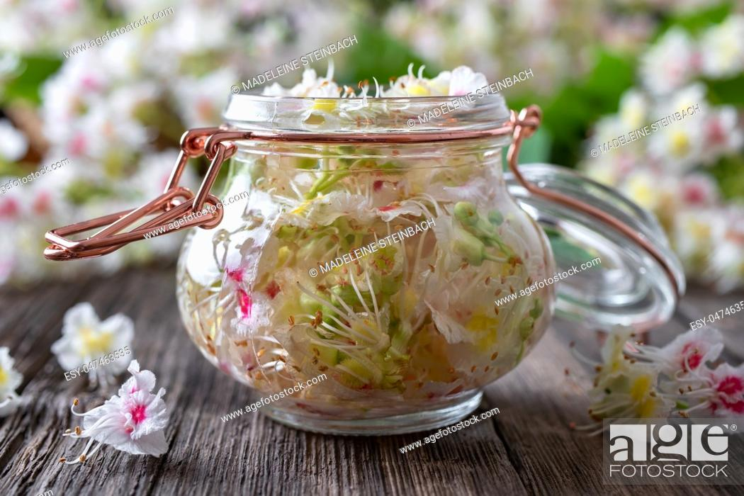 Stock Photo: A bottle filled with horse chestnut blossoms and alcohol, to prepare homemade tincture.