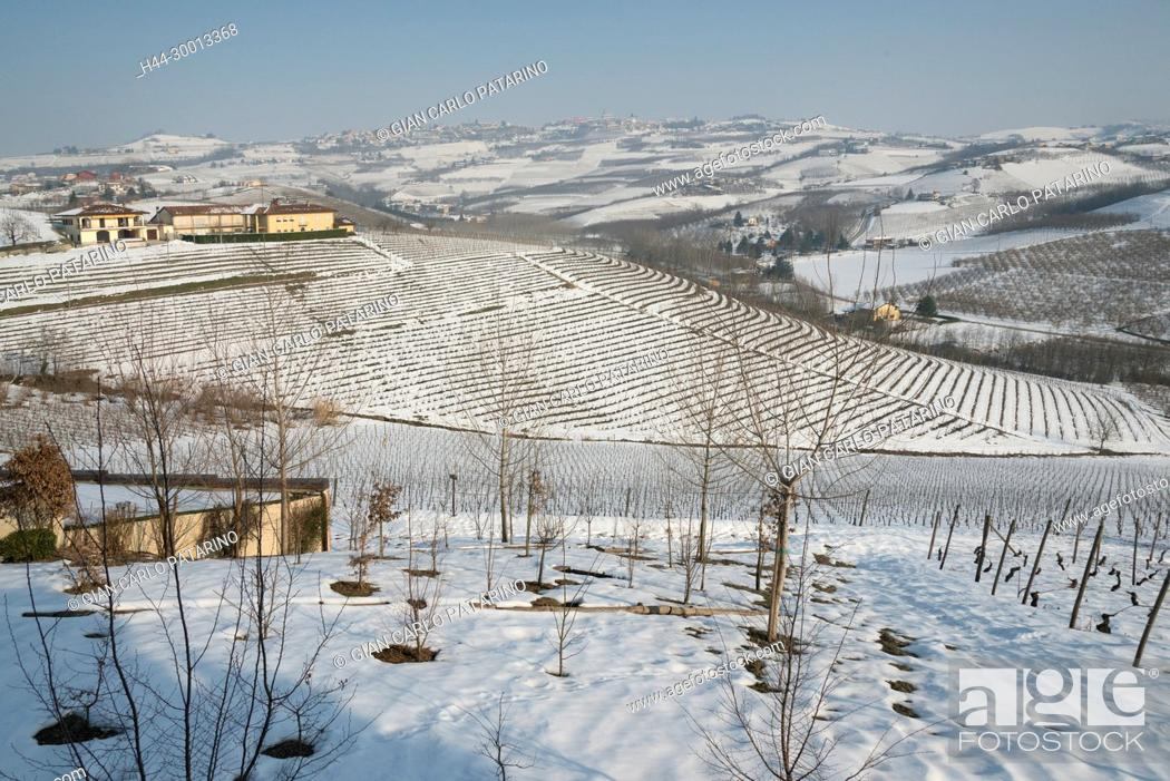Stock Photo: Italy, Piedmont, Vineyards, Langhe, panorama of vineyards of Piedmont Langhe-Roero and Monferrato in the World Heritage List of UNESCO View of vineyards in the.