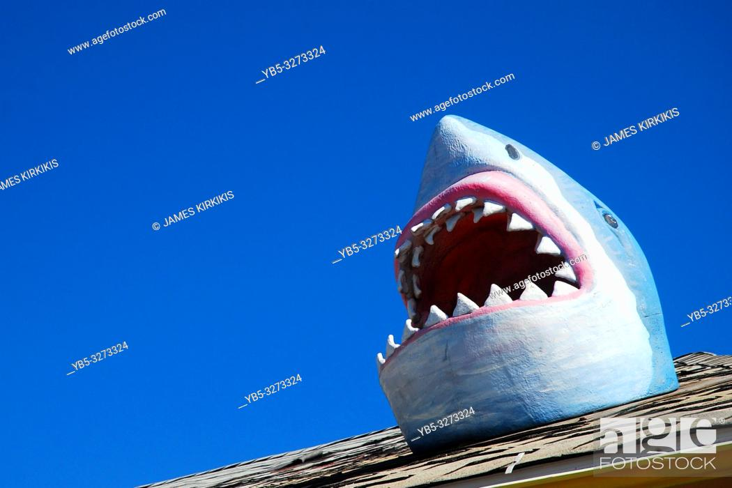 Imagen: A shark humorously breaks through the roof at an arcade.