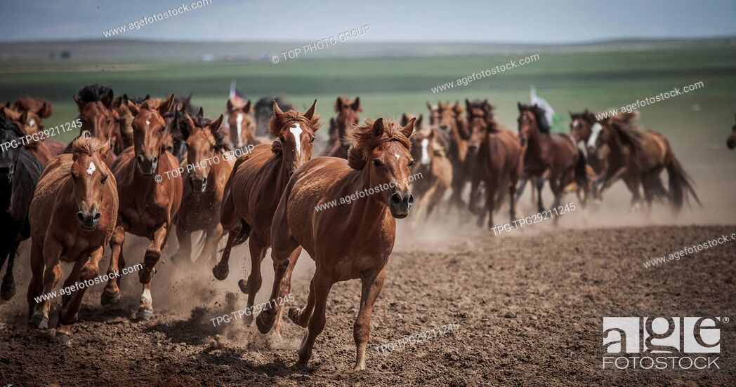 Imagen: Running Horse.