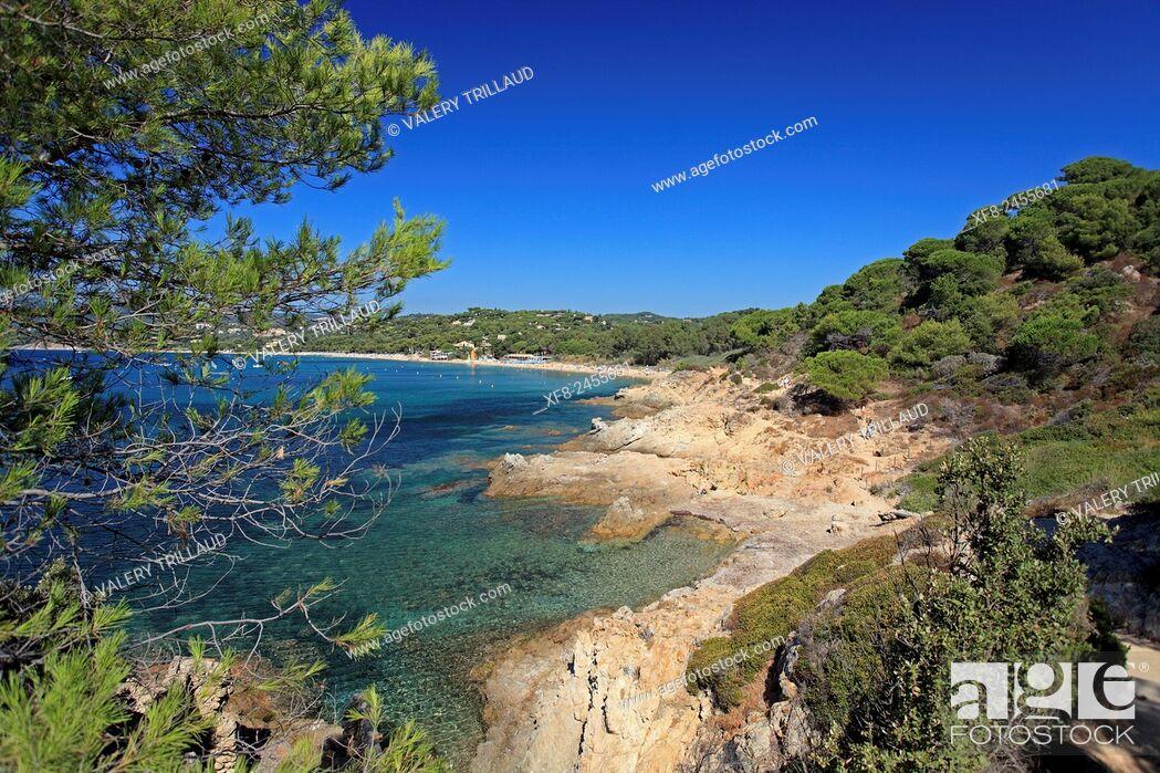 Stock Photo: Beautiful coast around La Croix Valmer, Var, Côte d'Azur, French Riviera, France.