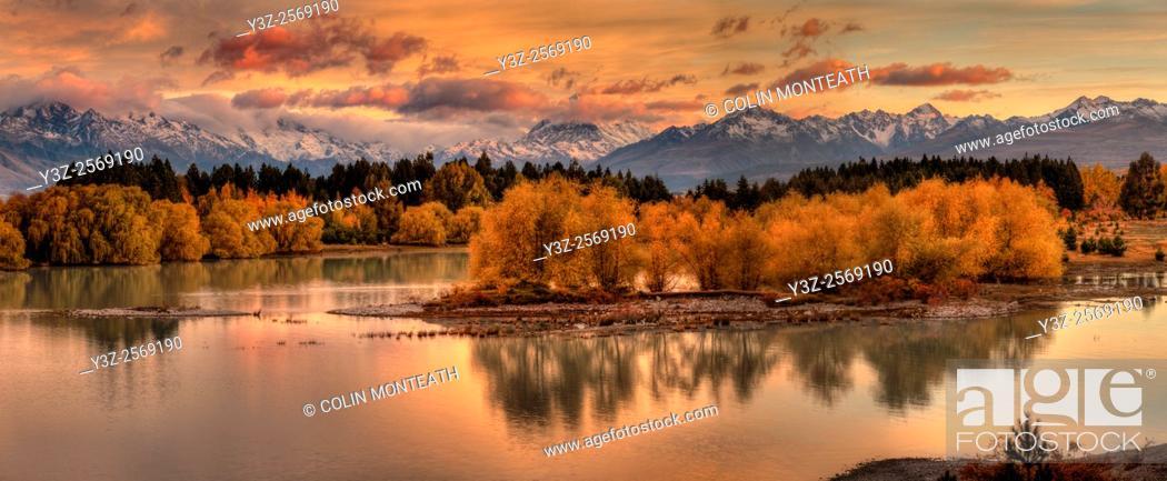 Imagen: Dawn panorama, willow trees in autumn colours, Lake Pukaki, Aoraki / Mt Cook wreathed in cloud, Mackenzie country, Canterbury.