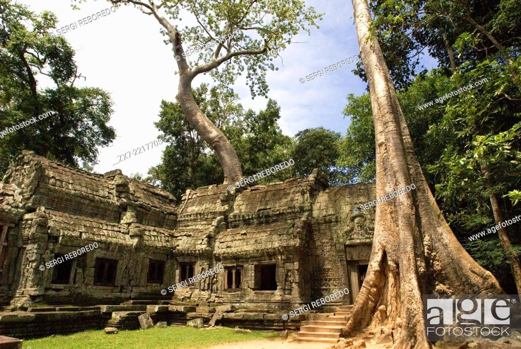 Stock Photo: Ta Prohm Temple. Ta Prohm's state of ruin is a state of beauty, which is investigated with delight and left with regret.